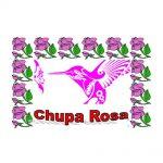 Estampa Plastificada Chupa Rosa