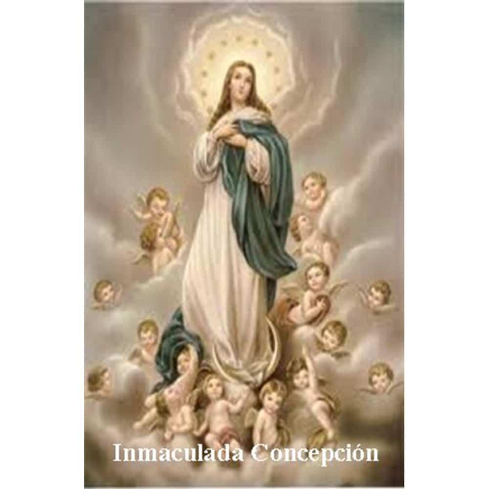 Estampa Plastificada Inmaculada Concepción