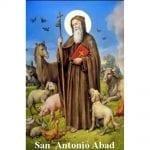 Estampa Plastificada San Antonio Abad