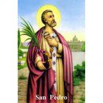 Estampa Plastificada San Pedro