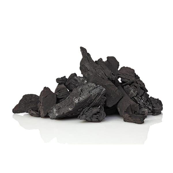 Pastillas de Carbón