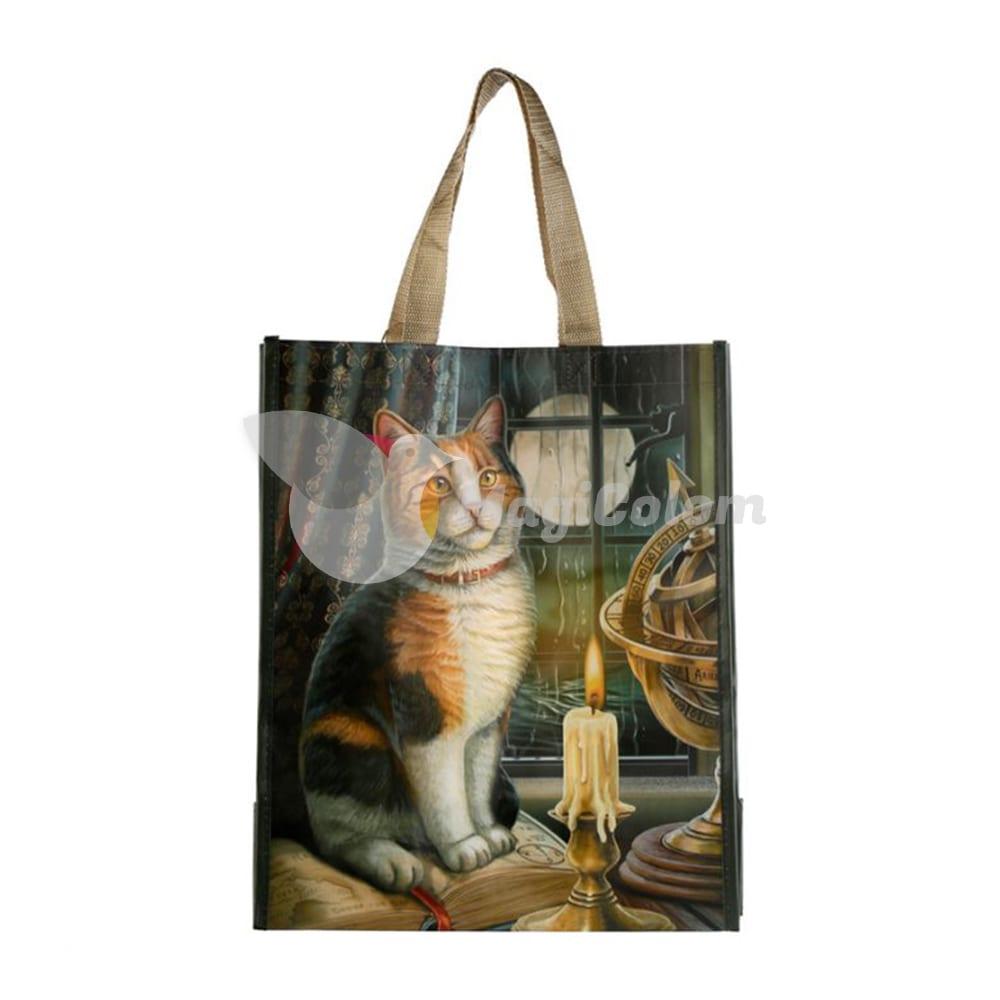 Bolsa Gato aventurero de Lisa Parker