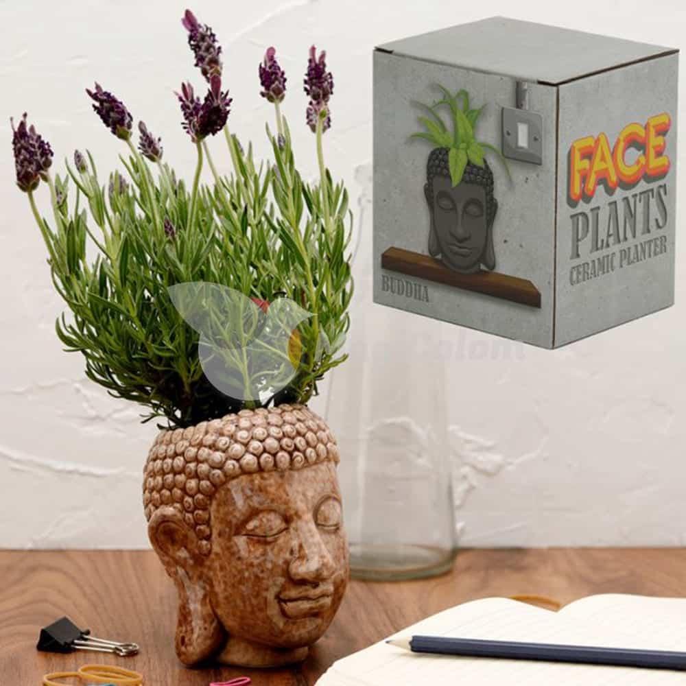 Maceta para Jardín de Cerámica Buda